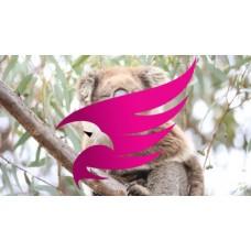 Koala2 - Copy